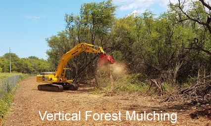 Forest Mulching - VARES CONTRACTING MAUI, HAWAII